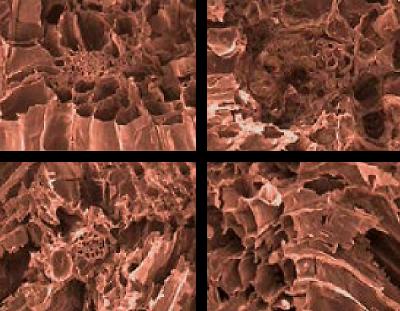 Clay Absorbent vs SpillFix Absorbent 1