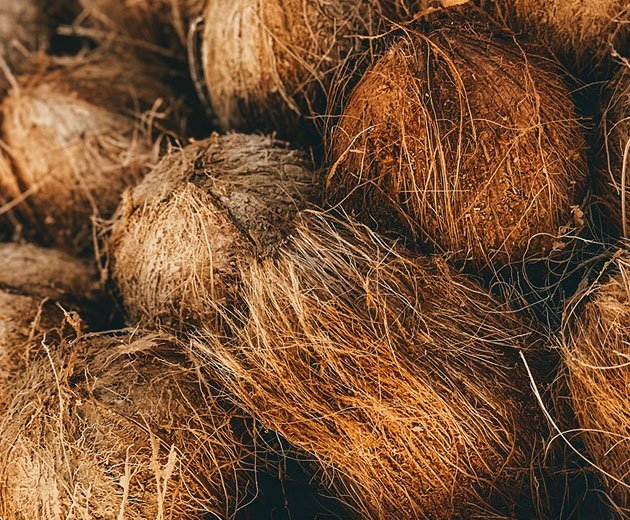 Our sustainable mission - coconut husks